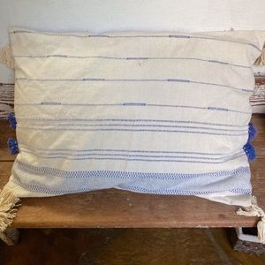 2 Anthropologie Blue & White Pillow Shams